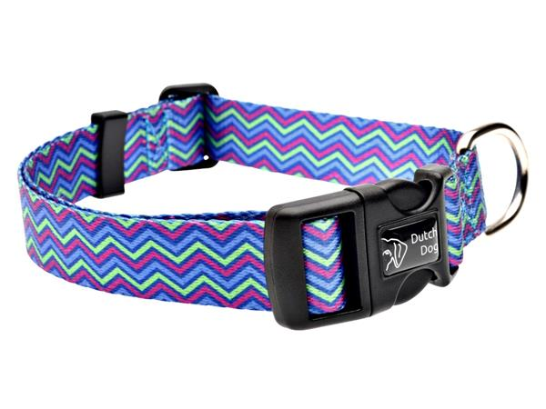 Dog collar Heightened Hyacinth zig zag