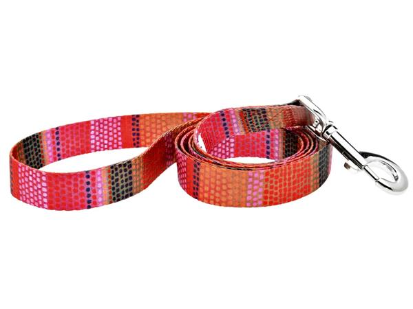 Fashion dog leash - 5ft Field of Blooms